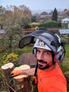 Tree Services in Kettering, Northamptonshire & Leicestershire.